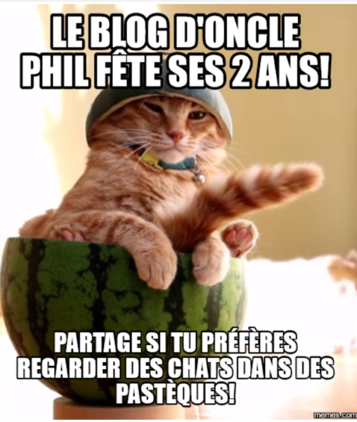 chat-pasteque-2ans